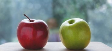 Photo of two apples - one red and one green.